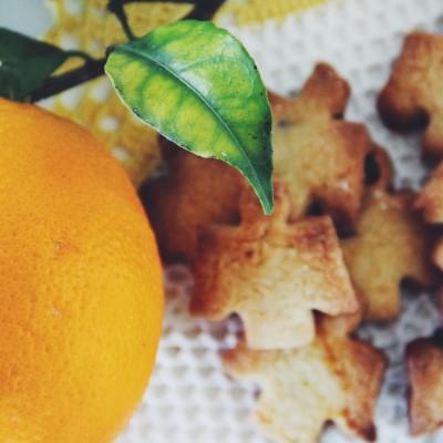 Bolachinhas anjinho de laranja moscatel com pepitas de chocolate preto