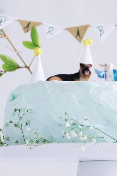 """Dois anos de príncipe FM e o bolo de aniversário """"infalível"""" (bolo de chocolate com recheio de natas frescas)"""