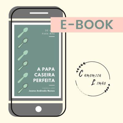 A PAPA CASEIRA PERFEITA (EBOOK)